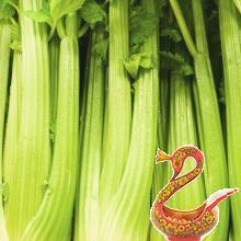 Полезные свойства и способы приготовления сельдерея