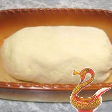 Заячий сыр